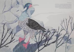 FMP_bird(2)